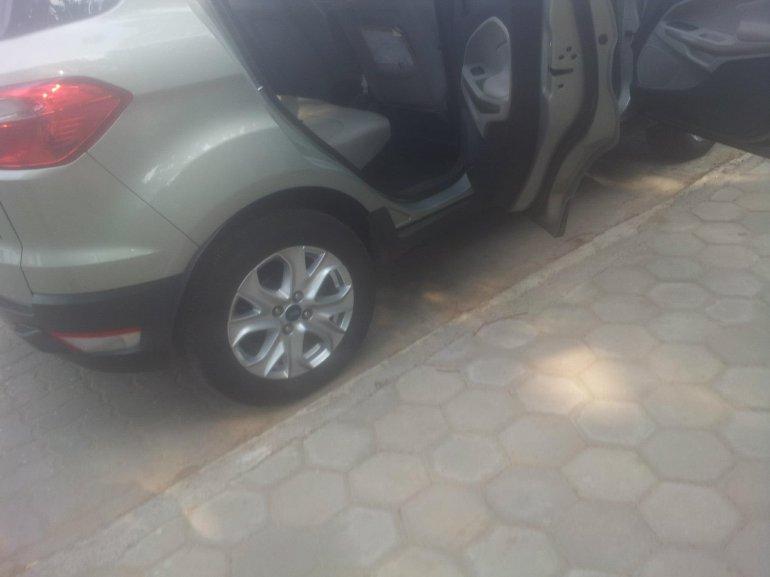 Ford EcoSport light door inserts